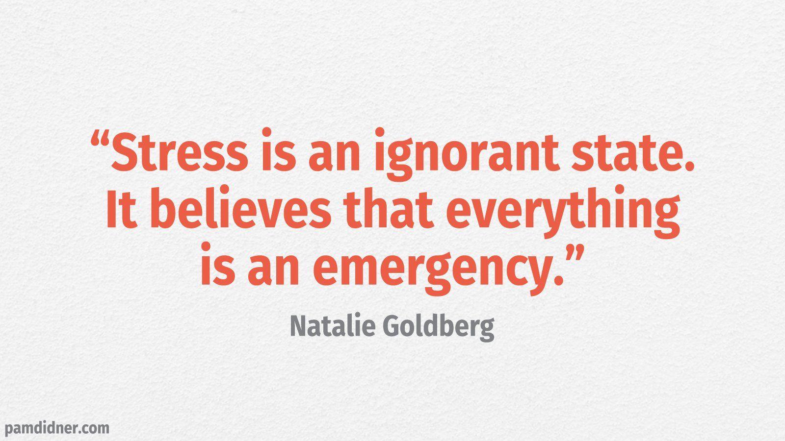 Stress Quote Natalie Goldberg