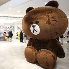 Line Store Brown Bear